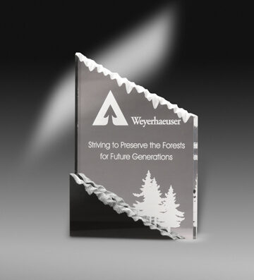sculpted_frosted_mountain_award